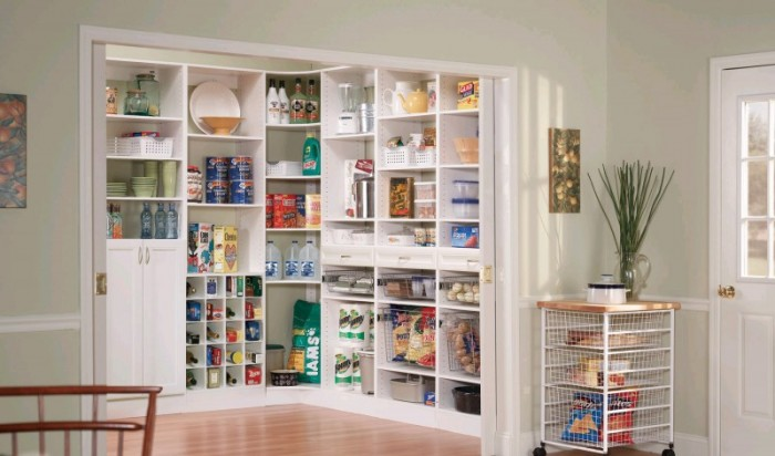 Pantries everything closets for Kitchen closet
